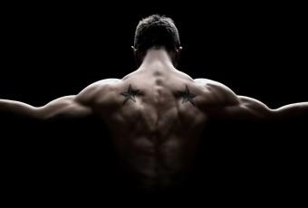 wenig-Wiederholungen-viele-Muskeln
